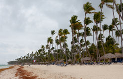 Hurrikan auf dem Strand am Tag Stockfotos