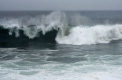Hurrikan-Graf-Wellen Stockbilder