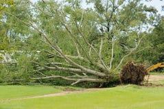 Hurrikan Gustav Stockbilder