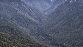 Hurrikan Ridge Lizenzfreie Stockfotografie