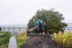 Hurrikan Sandy Lizenzfreies Stockbild