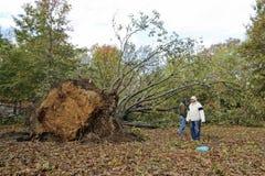 Hurrikan Sandy Lizenzfreies Stockfoto