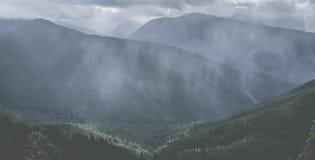 Hurrikankante Tal von Bäumen Stockfoto