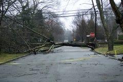 Hurrikanschaden Lizenzfreie Stockfotografie