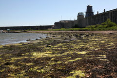 Hurst Castle Royalty Free Stock Image