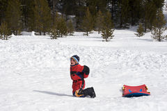 Hurt boy sledding Stock Photos
