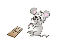 Hurt mouse Stock Photography
