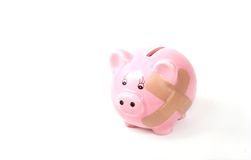 Hurt piggy bank Stock Image