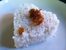 Hurtig portion av ris i Ubud, Bali, Indonesien Royaltyfri Fotografi