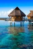 Hus över det genomskinliga tysta havsvattnet tahiti Arkivfoto