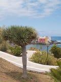 hus över parksjömanhavet Royaltyfri Fotografi