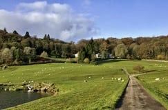 Hus amidst trees i den Winster dalen, Cumbria Royaltyfria Foton