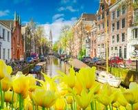 Hus av Amstardam, Nederländerna fotografering för bildbyråer