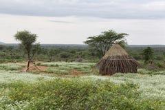 Hus av folk från en stam Hamer Arkivfoton