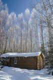 Hus bland träd i vinter Arkivbilder