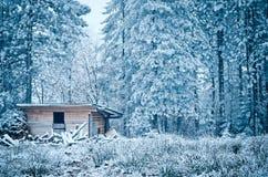 Hus för att lagra vedträ i vinter arkivbild