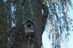 Hus för fåglar Arkivbilder