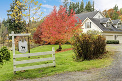 Hus för lantgård för vit häst amerikanskt under nedgång med grönt gräs. royaltyfri foto