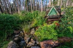 Hus för naturlig vår Arkivbild