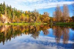 Hus för svanar på sjön i höstskogen arkivbilder