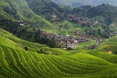 Hus för traditionell kines i ris sparad terrass royaltyfri bild