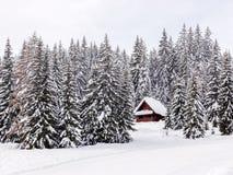 Hus för vinterferie i Slovenien fjällängar royaltyfri fotografi