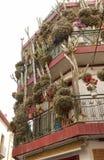 Hus i Calella med massor av blommor och kakturs Arkivbild