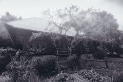 Hus i den svarta skogen Royaltyfria Foton