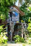 Hus i djungeln Arkivfoton