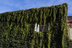 Hus i Esztergom Royaltyfria Bilder