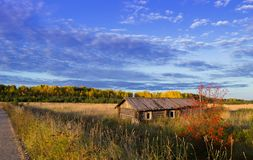 Hus i fältet nära vägen Arkivbilder
