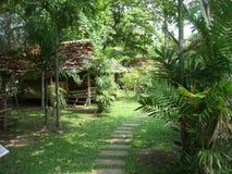 Hus i fresheneren för luft för skoggräsplan Thailand Arkivfoto