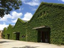 Hus i gräsplan Arkivfoton