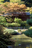 Hus i japanträdgård Royaltyfria Bilder