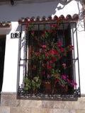 Hus i Nerja, en sömnig spansk feriesemesterort på Costa Del Sol nära Malaga, Andalucia, Spanien, Europa Arkivbilder