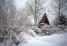 Hus i skog Arkivfoton