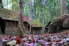 Hus i skogen Arkivfoto
