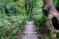 Hus i skogträdgård Arkivfoton