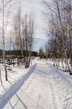 Hus i snöig ukrainsk by Arkivbilder