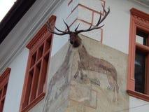 Hus med fullvuxna hankronhjorten - Sighisoara, Rumänien Arkivfoto