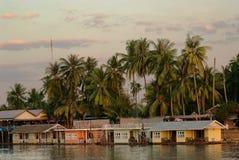 Hus med palmträd på bankerna av floden Arkivfoton