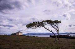 Hus med trädet i Darlington på Maria Island, Tasmanien, Australien Arkivfoto
