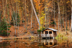 Hus nära sjön Arkivbilder