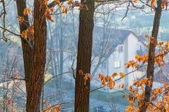 Hus nära skogen Arkivbilder