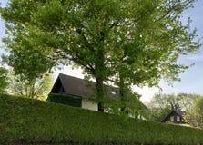 Hus och gräsplanhäck i Frankrike arkivbild