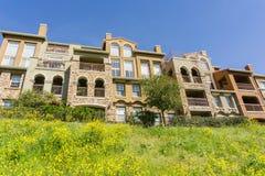 Hus och lös senap på en vårdag, San Jose, Kalifornien royaltyfri foto