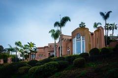 Hus och palmträd på en klippa i La Jolla, Kalifornien Royaltyfria Bilder