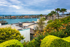 Hus och sikten av Newport sätter på land, från Corona del Mar Royaltyfri Bild