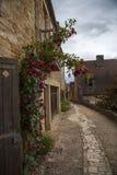 Hus och väg med blommor i Beynac Frankrike Arkivbild