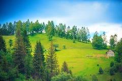 Hus på de forested lutningarna av Carpathians Arkivbilder